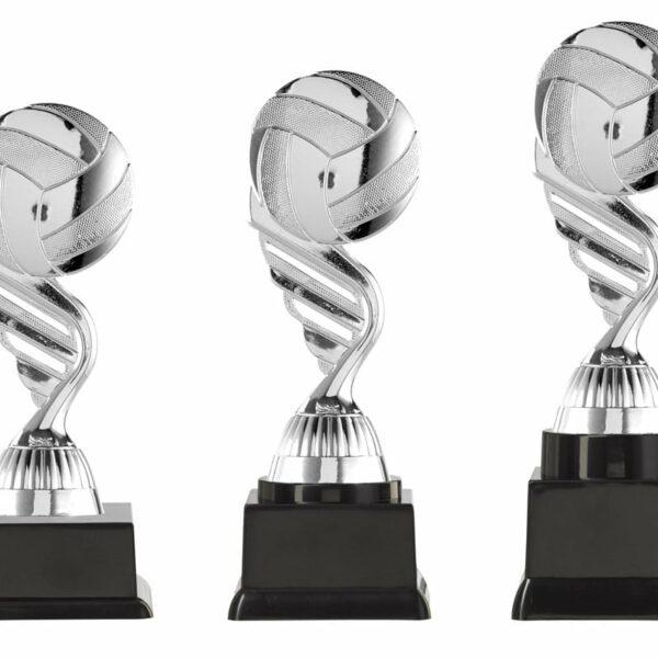 Volleybal beker zilver