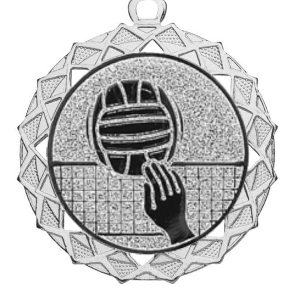 Volleybal medaille