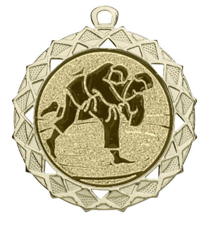 Judo medaille